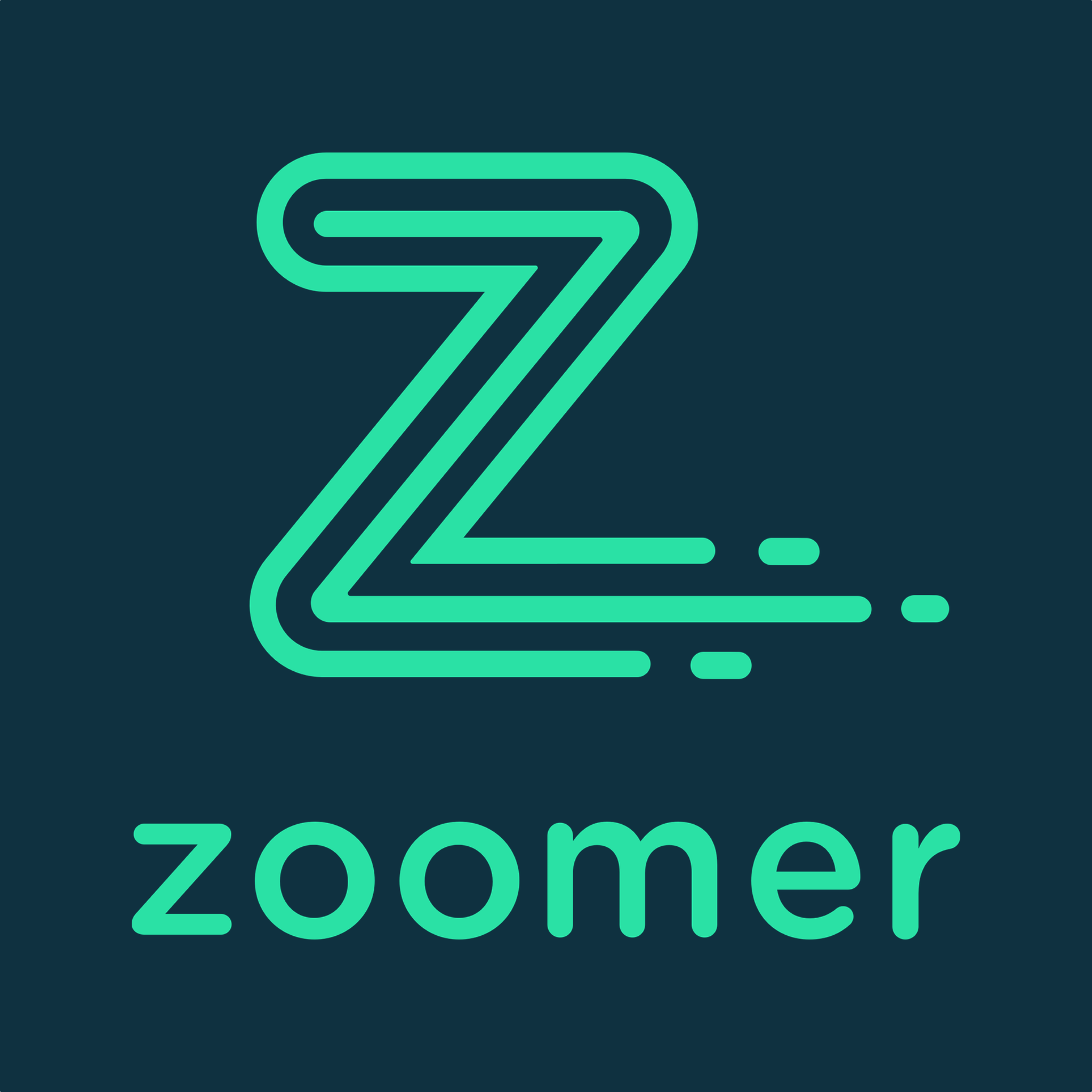 Zoomer Delivery